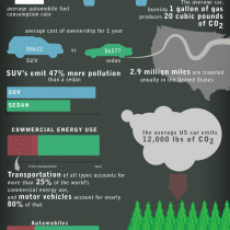 Automobiles and the Environment Infographic