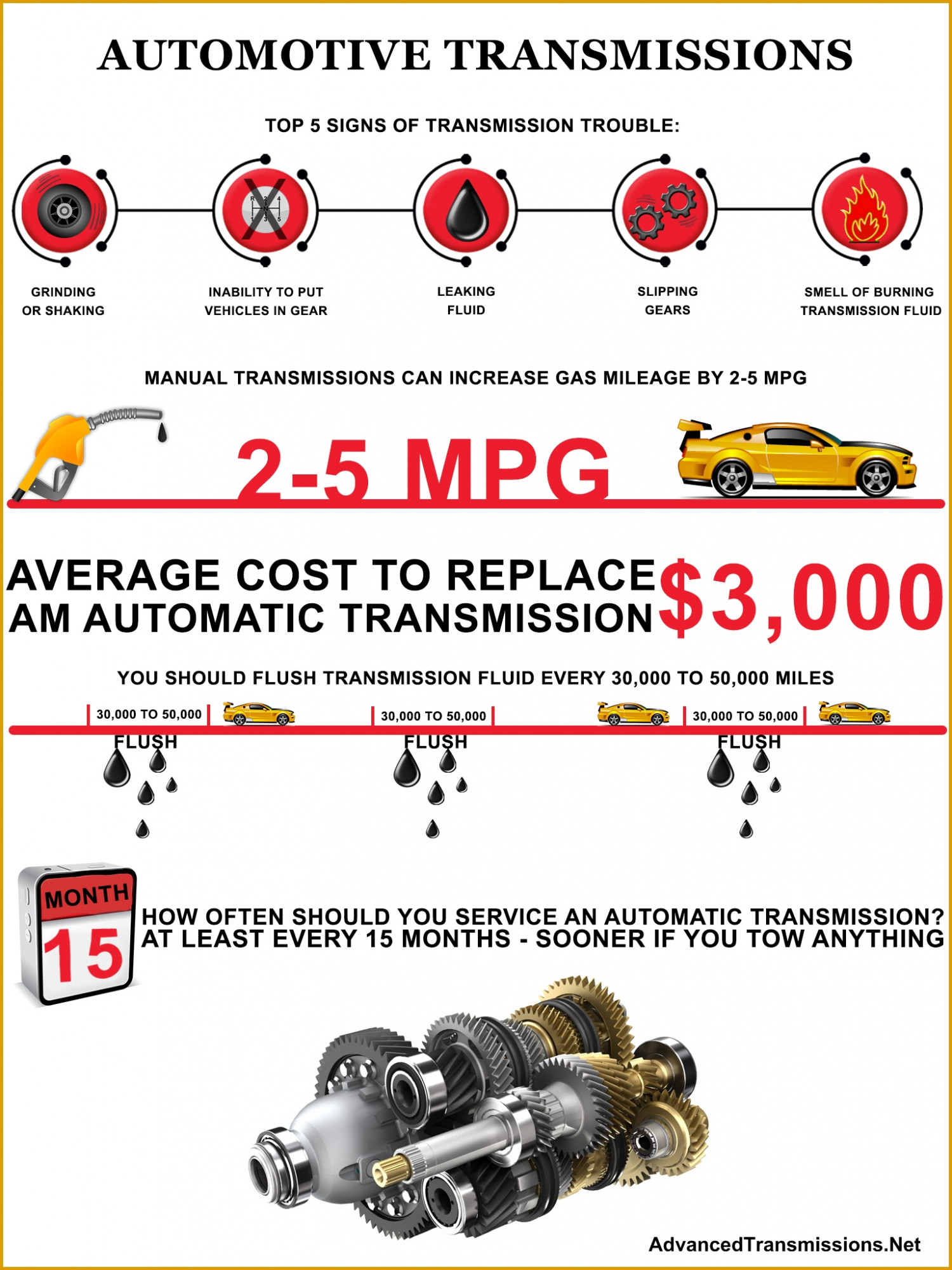 Automotive Transmissions  Infographic