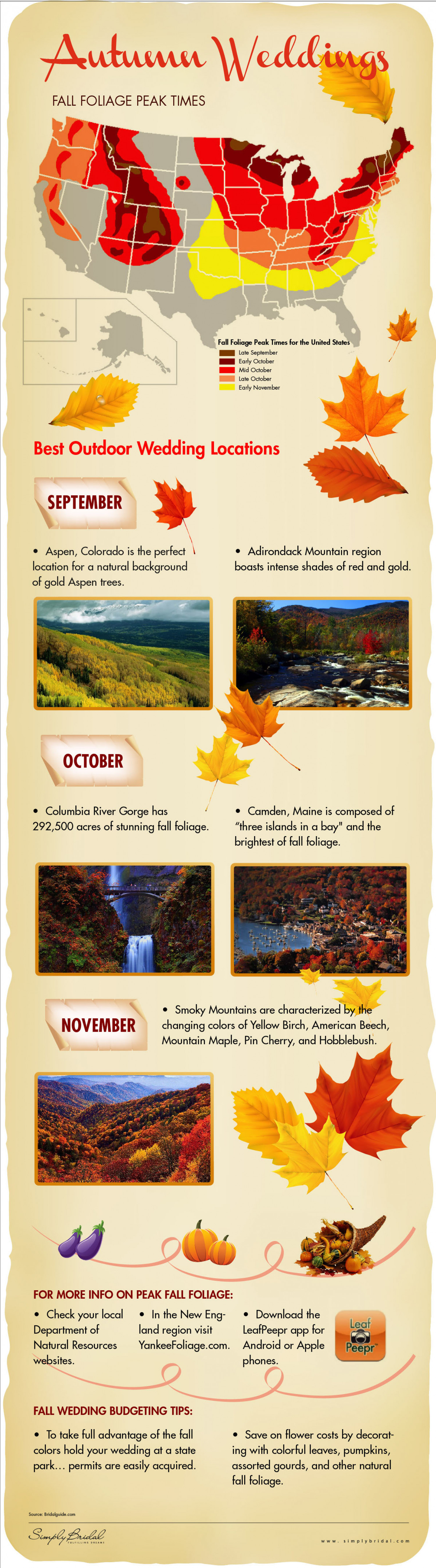 Autumn Wedding Locations Infographic
