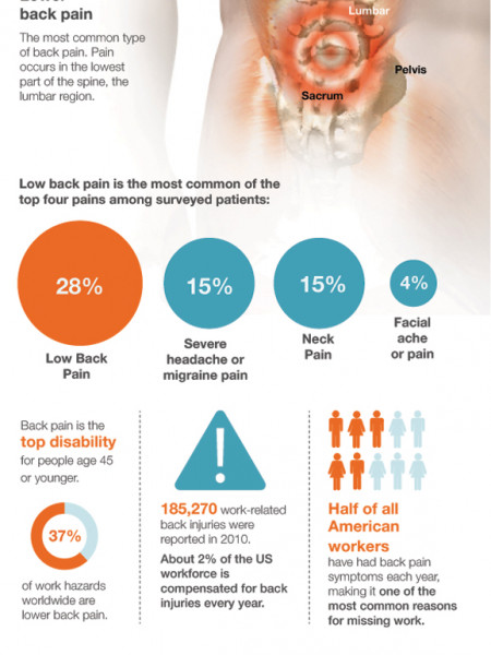 Back Pain 101 Infographic