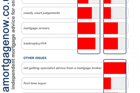Bad credit mortgages Infographic