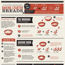 Baking Starter Breads Infographic