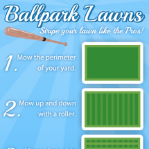 Ballpark Lawns - Stripe your lawn like the Pros! Infographic