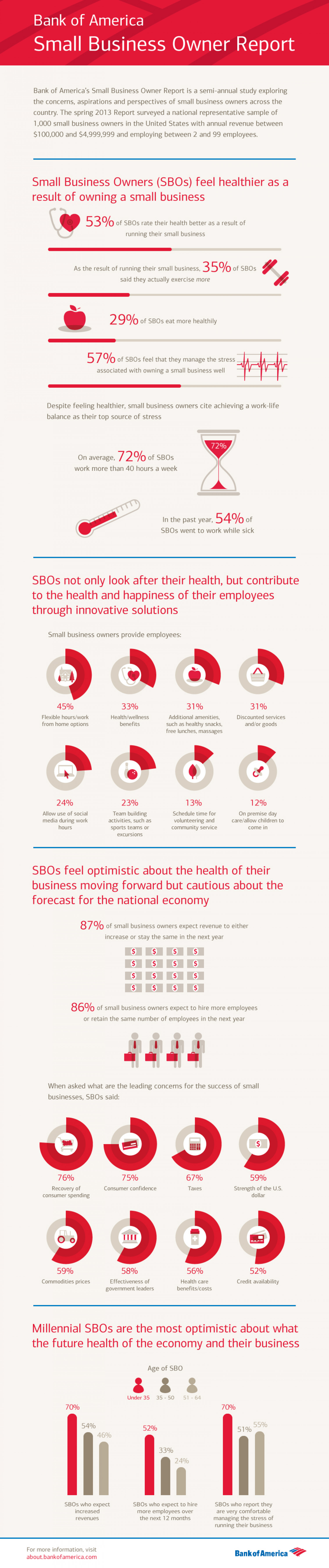 Bank of America Small Business Owner Report Spring 2013 Infographic