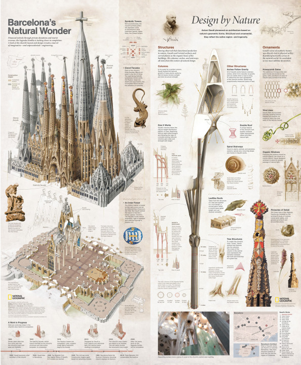 Barcelona's Natural Wonder Infographic