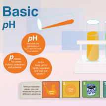 Basic pH Infographic
