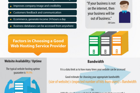 Basics for Choosing a Good Web Host Infographic