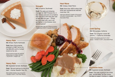 Battle of Thanksgiving Dinner Elements in 2011 Infographic
