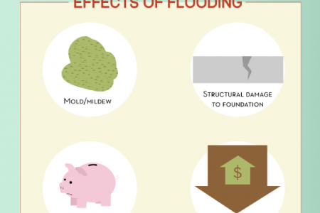 Beating Basement Flooding Infographic