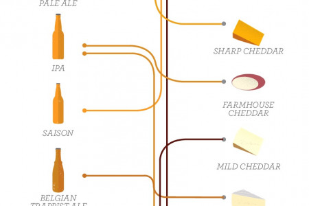 Beer and Cheese Pairing Guide Infographic