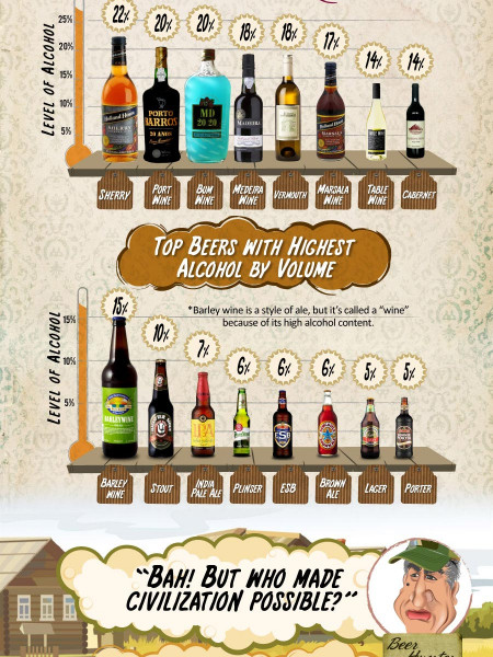 Beer vs. Wine: Surprising Facts, Popular Brands & Big Festivals Infographic