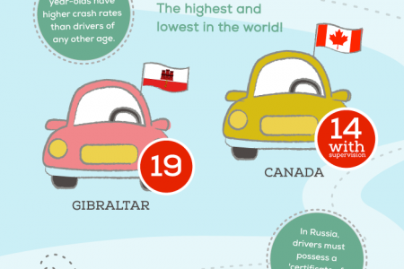 Behind The Wheel Infographic