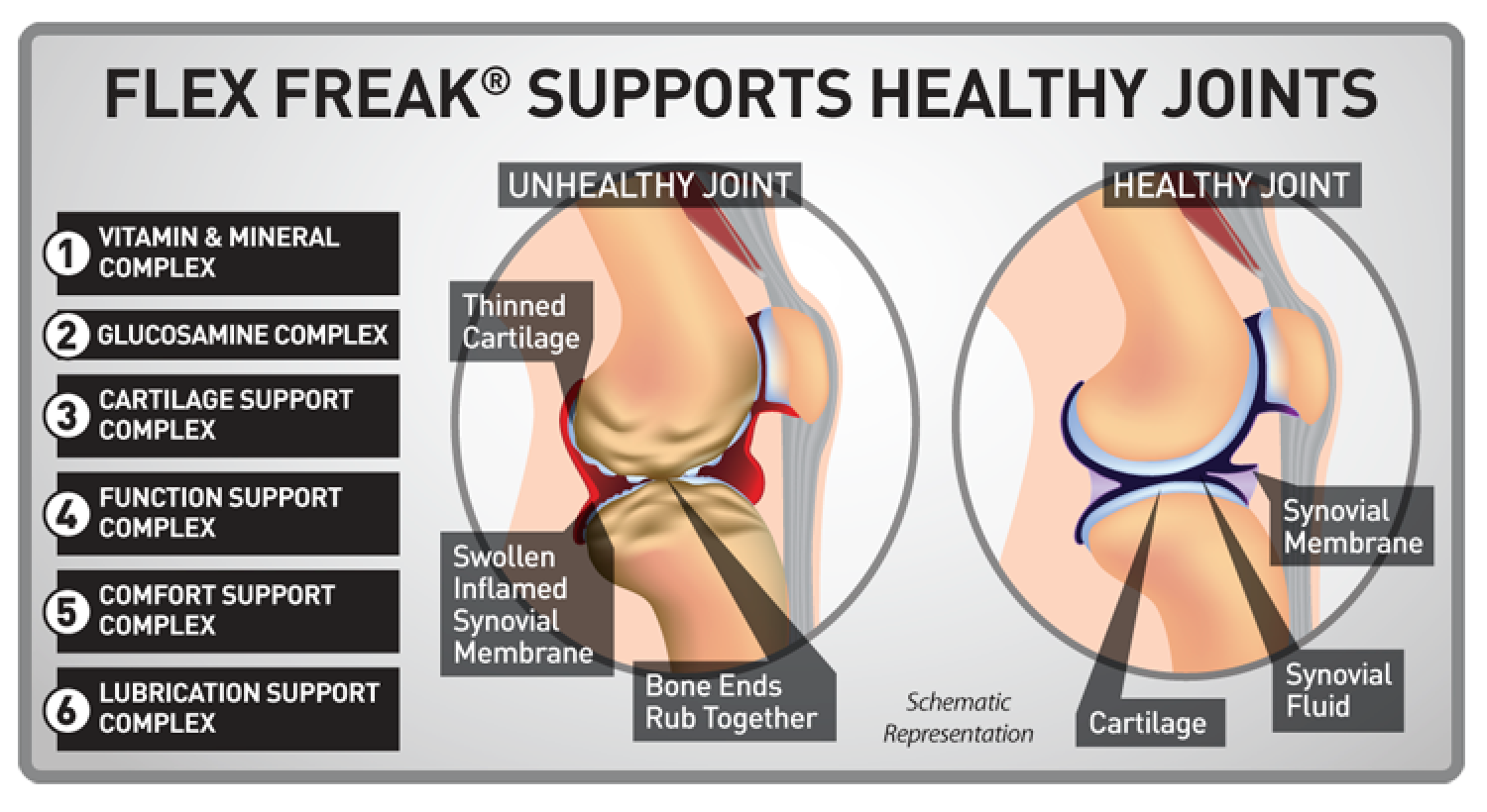 Benefits of Joint supplement Infographic
