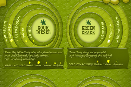 Best Medical Marijuana Strains in San Francisco Infographic