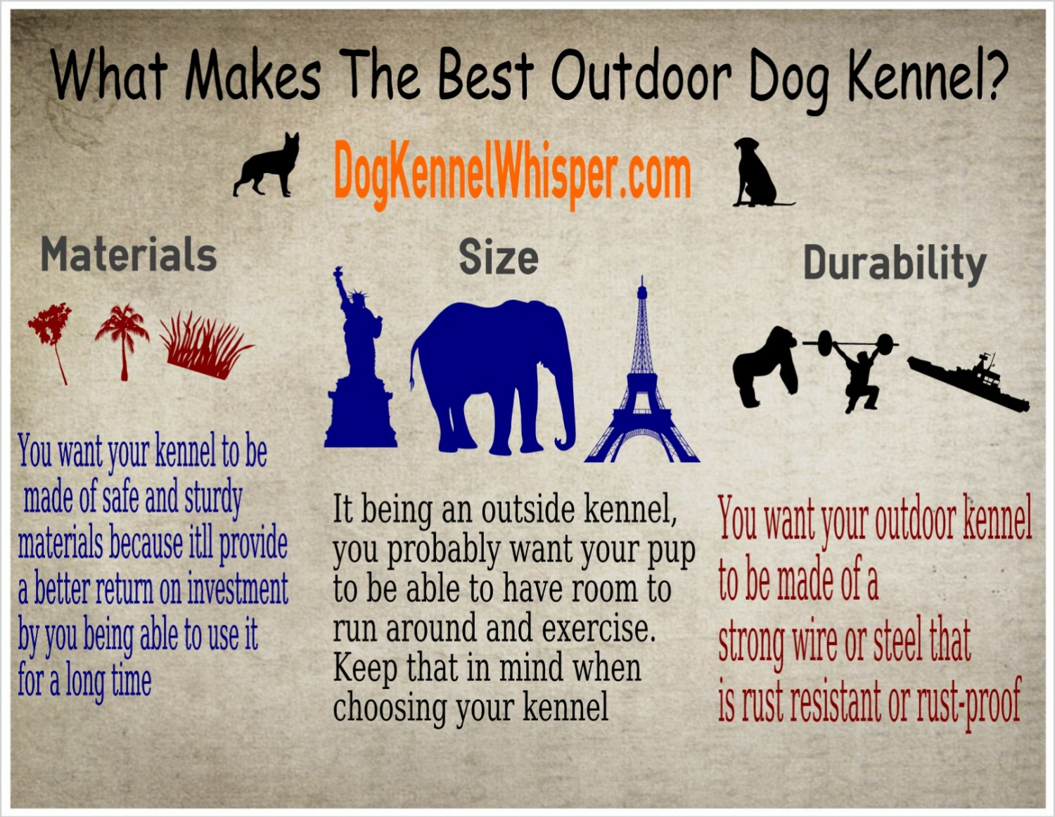 What Makes The Best Outdoor Dog Kennel? Infographic