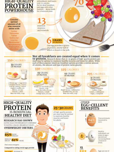 Better breakfast with protein-rich eggs Infographic