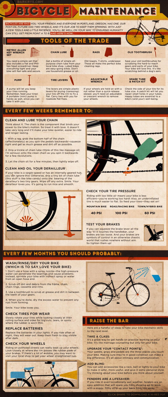 Bicycle Maintenance InfoGraphic