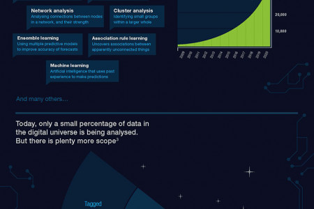 Big Data Snapshot Infographic