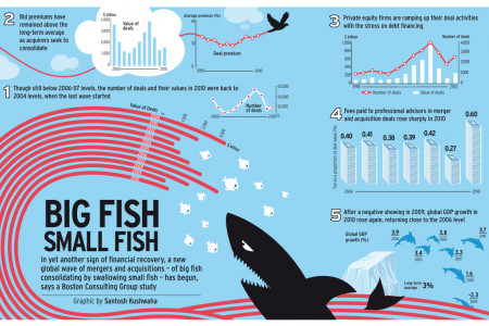 BIG FISH, SMALL FISH Infographic