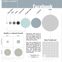 Big Photo: The Photosharing Market Infographic
