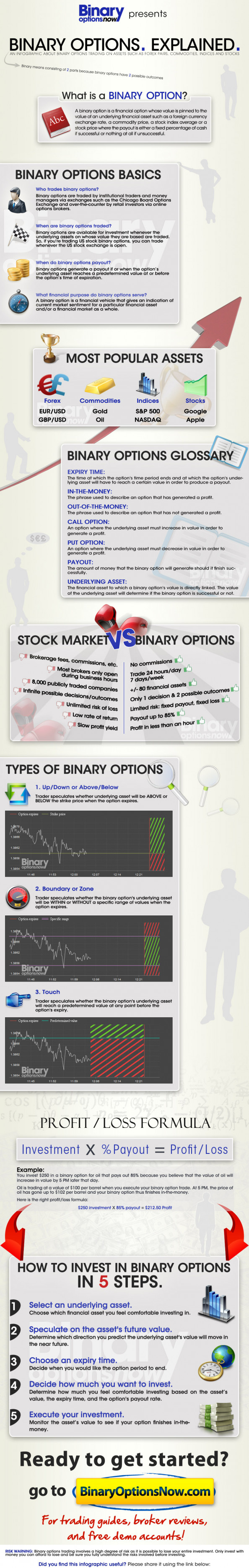 Binary Options Explained: What are Binary Options Infographic