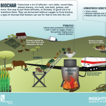 Biochar: Beyond Slash and Burn Infographic