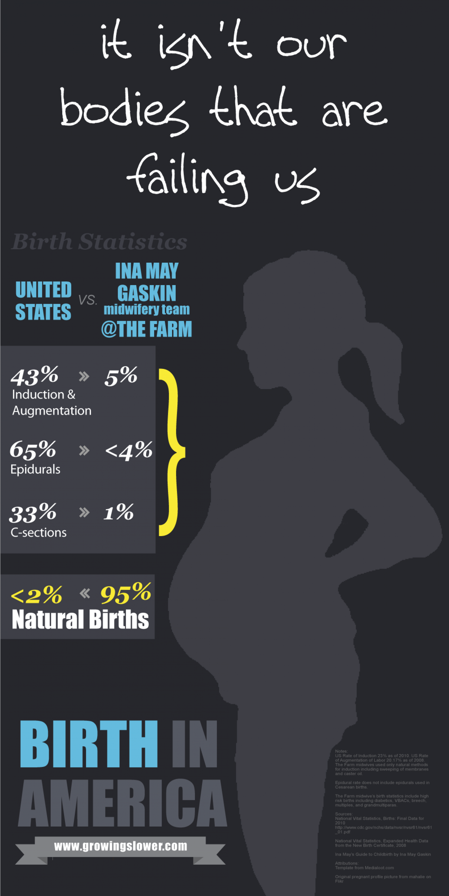Birth in America Infographic