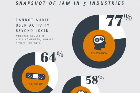 Blind Spots And Security Risks In Current Identity Strategies Infographic