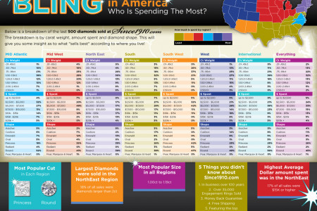 Bling In America: Who Spends the Most Infographic