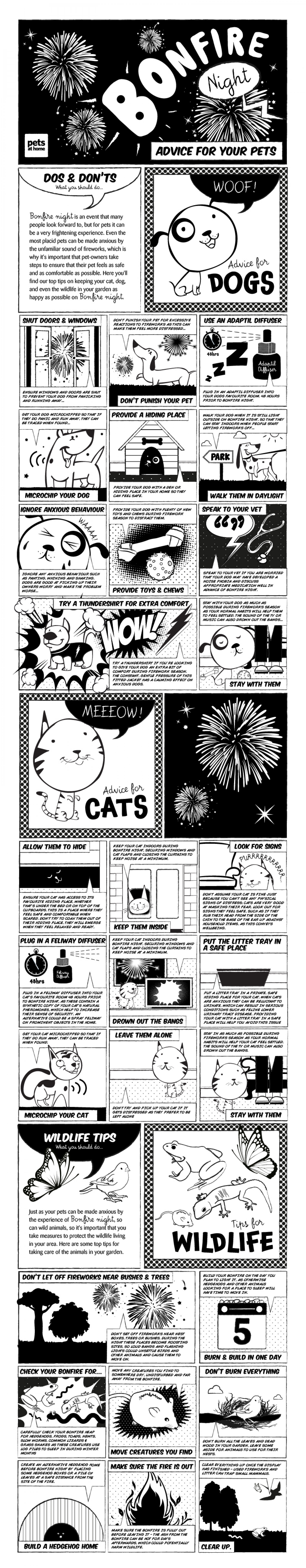Bonfire Night: Advice for Your Pet Infographic