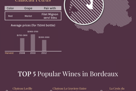 Bordeaux Wines - The Most Luxurious French Souvenirs! Infographic