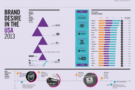 Brand Desire in the US 2013 Infographic