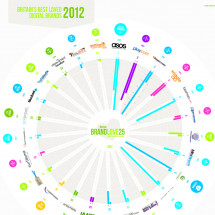 BrandLove25-2012 Infographic