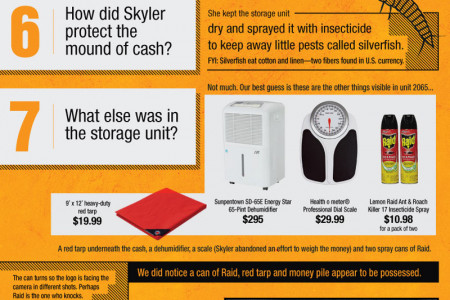 'Breaking Bad' Storage Unit: Answers to 13 Nagging Questions Infographic