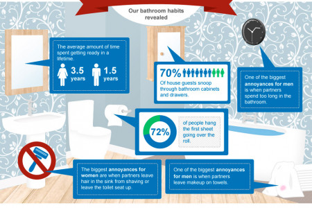 Brits in The Bathroom Infographic