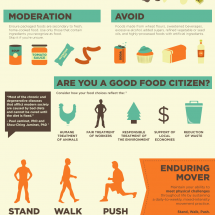 Broken Lifestyle: Optimize Your Health Infographic