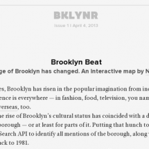 Brooklyn Beat Infographic