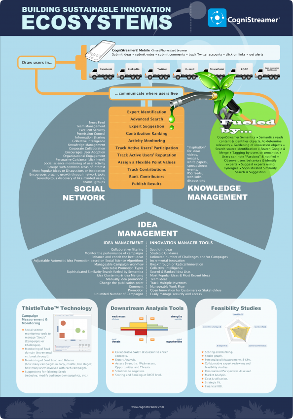Building Sustainable Innovation Ecosystems Infographic