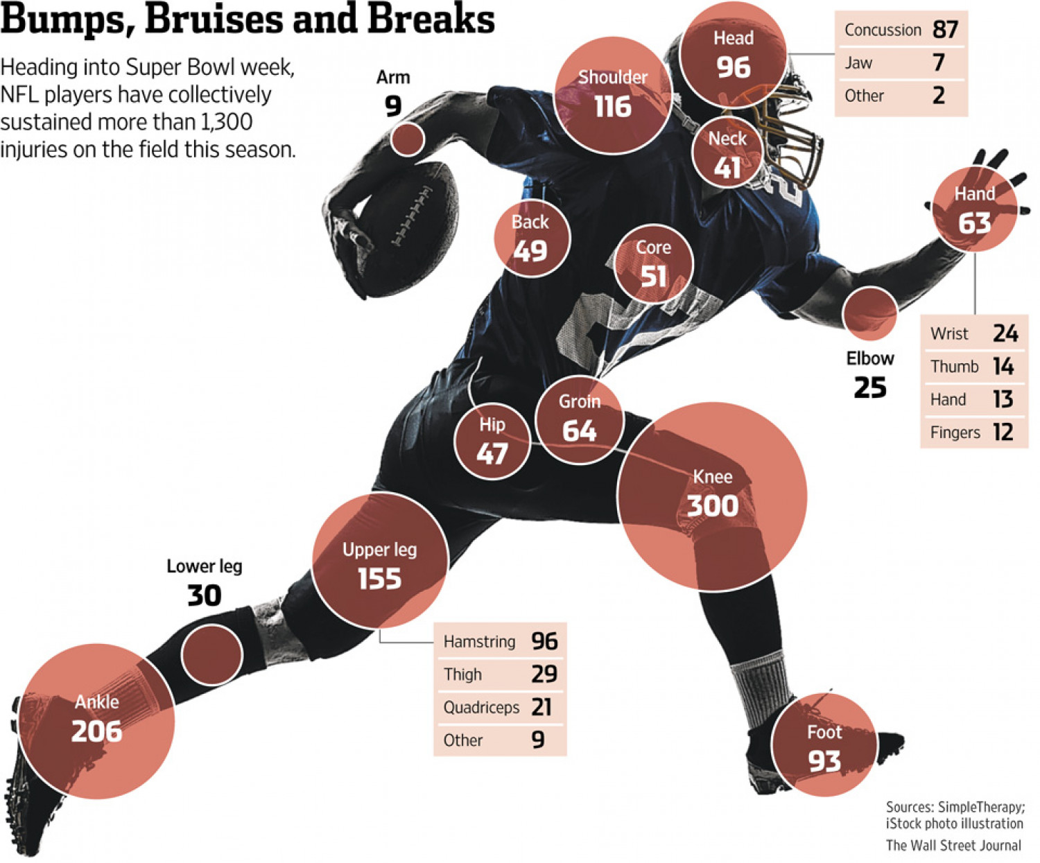 Bumps, Bruises and Breaks Infographic