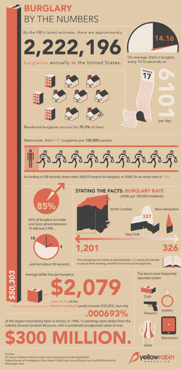 Burglary Statistics Infographic