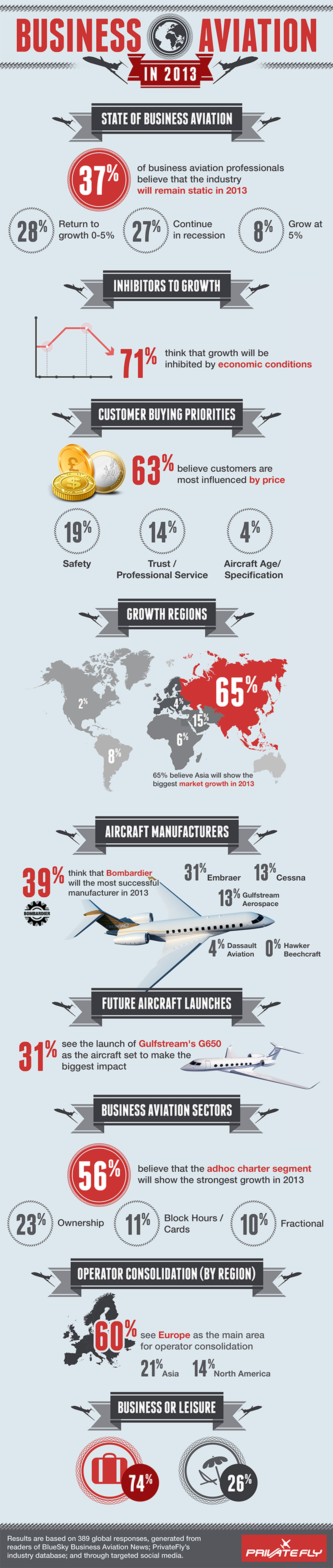 Business Aviation in 2013 Infographic
