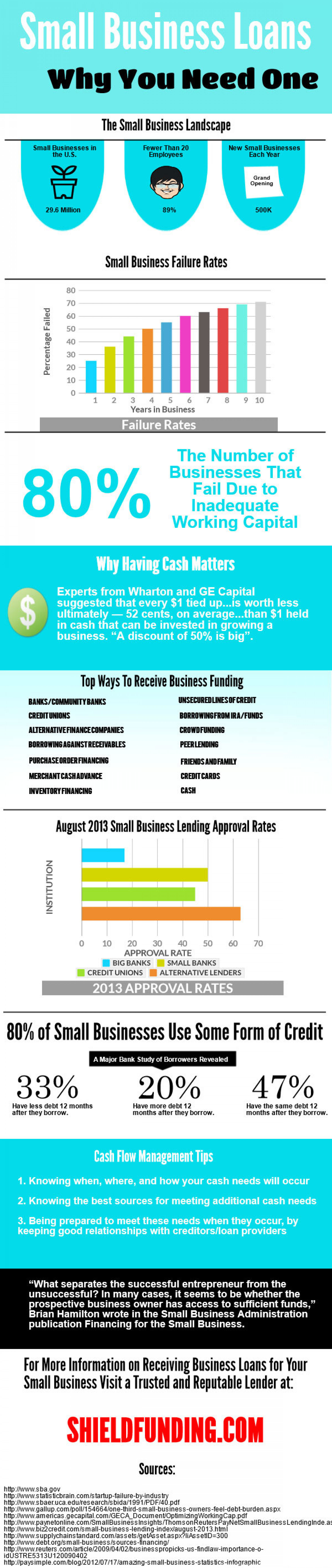 Small Business Loans: why you need one  Infographic