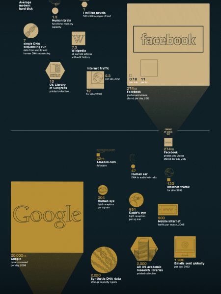 Bytes Sized Infographic
