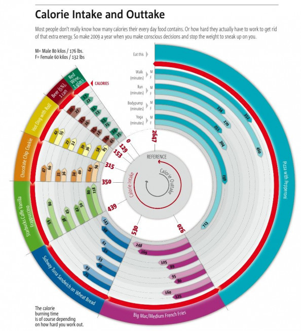 Calorie Intake and Outtake  Infographic