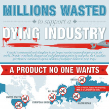 Canada's Commercial Seal Slaughter: A Dying Industry Infographic