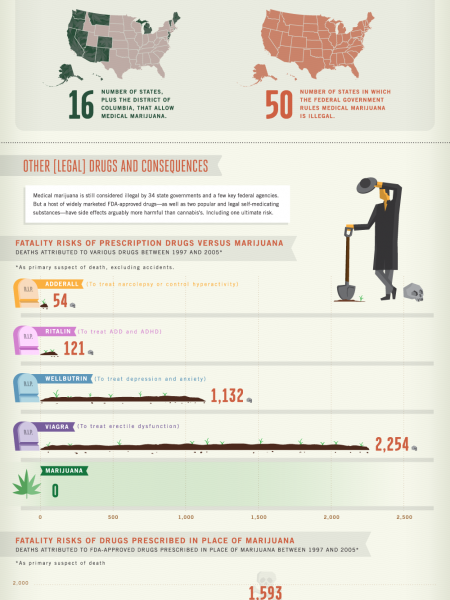 Cannabis contradictions Infographic