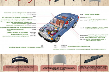 Car Body Parts Infographic