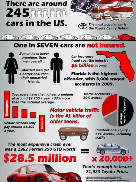 Car Insurance In The United States Infographic
