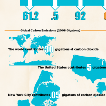 Carbon Emissions Overview Infographic