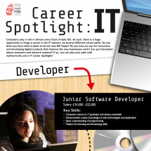 Career Spotlight: IT Infographic